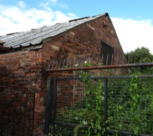 Remnants of Holme Oak Farm building -Old Kirk Farm Cowshed (b)